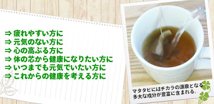 マタタビ茶はおすすめです
