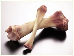 安心の国産・骨髄エキスを使用