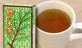 タラノキ茶30パック
