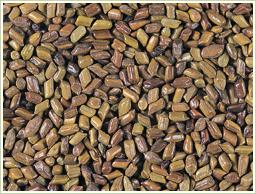 原料には高品質のエビスグサ種子を使用